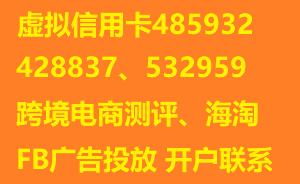 虚拟信用卡485932、428837、532959虚拟卡平台开户